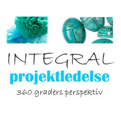 Integral Project Management